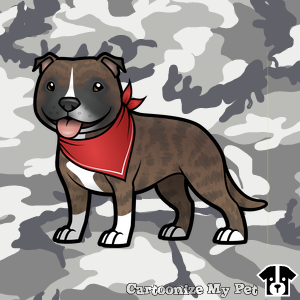 cute staffy with red bandana on camo background